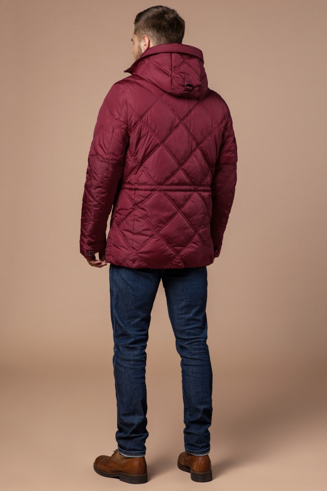 "Красная зимняя куртка для мужчин модель 12481 Braggart ""Dress Code"" фото 5"